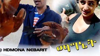 Eritrean Comedy: ማግነት ብ ኣማን ናሕሽ (ወዲ ናሕሽ) Magnet by Aman Nahsh - 2017