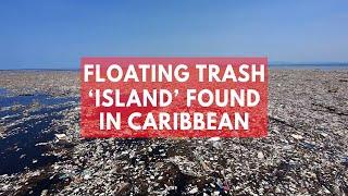 Floating trash