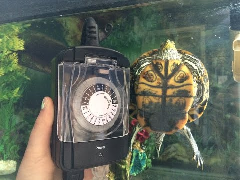 Automatic Light Timer Set Up For Mr Turtle!s Turtle Tank!  A quick review and update!