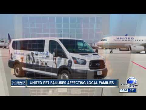 United pet failures affecting local families