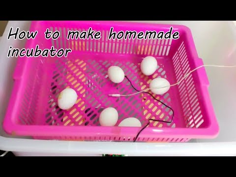 how to make incubator | incubator | homemade egg incubator | egg incubator  | chicken incubator