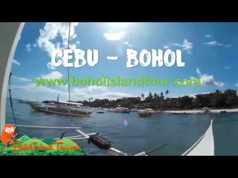 How to travel Cebu | Bohol Tours