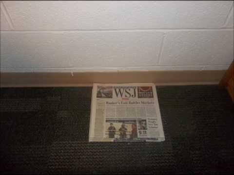 The Wall Street Journal Accumulation