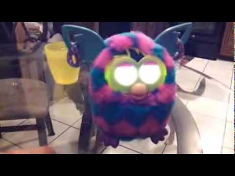 Furby Boom Gender Changed from girl to super obnoxious boy