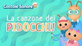 La canzone dei pidocchi - Canzoni per bambini di Coccole Sonore
