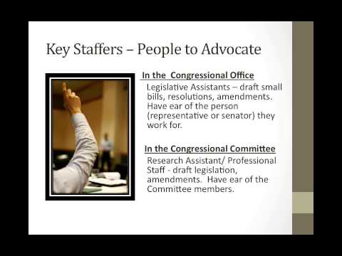 Make Your Voice Heard:  A Beginner's Guide to Lobbying Congress for your Medical Practice