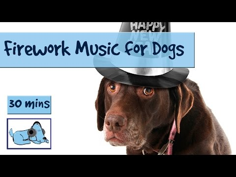 Music to Relax Dogs Scared of Fireworks on New Years Eve! Help Your Dogs Calm Down During Fireworks