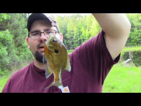 Pond fishing catch clean cook