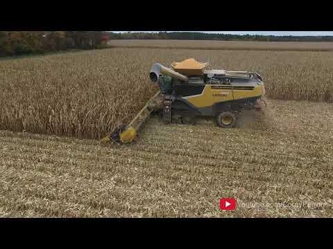 Corn Harvest - 2016
