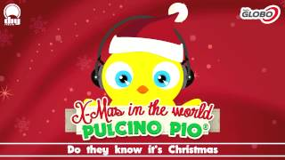 PULCINO PIO - Do they know it