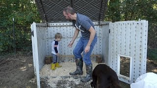 TEACHING CLARK HOW TO CLEAN THE CHICKEN COOP!