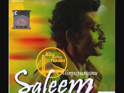 Saleem - Menyayangimu