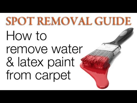 How to get Paint out of Carpet - Water and Latex | Spot Removal Guide