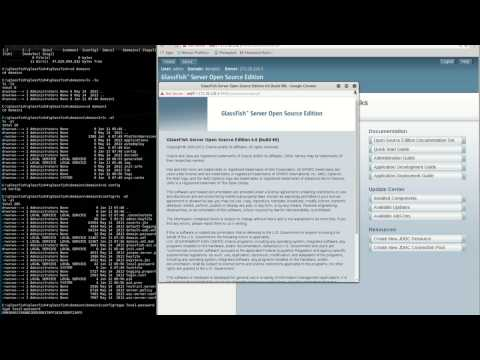 Glassfish 4.0 (build 89) - Local Password Login Trick