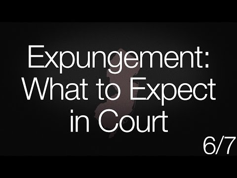 Expungement: What to Expect in Court (6/7)