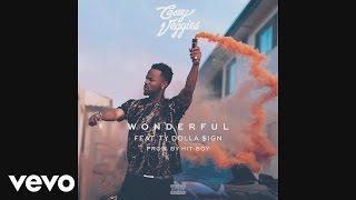 Casey Veggies - Wonderful (Audio) ft. Ty Dolla $ign