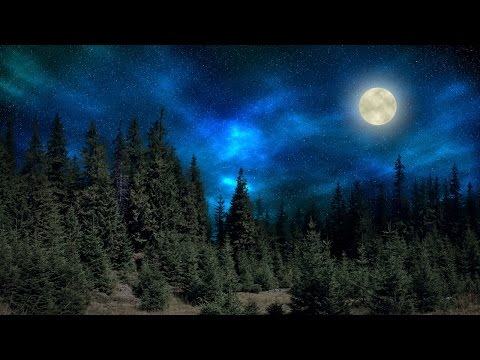 Photoshop Tutorial: How to Transform a Daytime Landscape into a Moonlit, Starry Night