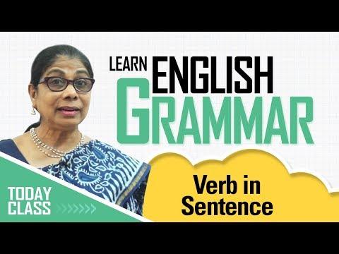 Learn English Grammar | Verb in sentence | Basic English Grammar for kids