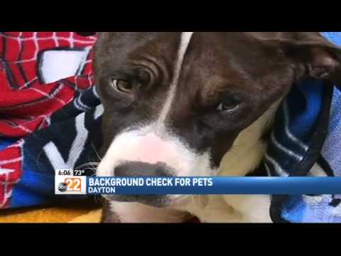 Animal Adoption Bill To Require Background Check for Pets