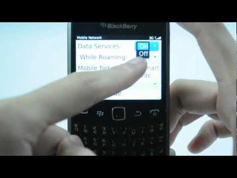 Blackberry Curve 9360: Turn off / on data services
