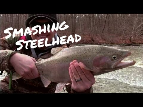 How to Better Fish for Steelhead - Catch More Fish