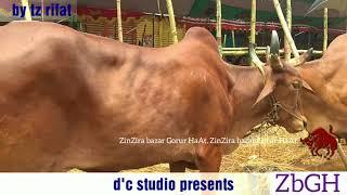 342   Tb Qurbani 2017   Bolod Pair Asking 400k   Noyabazar Haat    Old Dhaka   Zbgh 2018