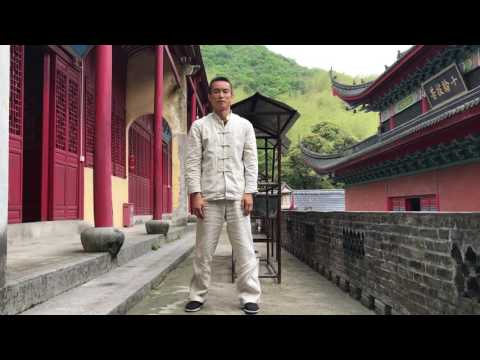 Daoyin (Qigong) series for spinal health