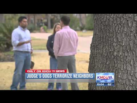 Neighbors blame Harris County judge for aggressive dogs on the loose