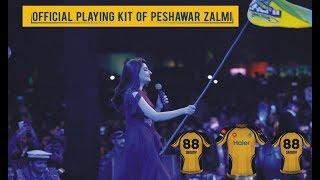 Peshawar Zalmi kit ceremony in Governor house Peshawar  PSL 4