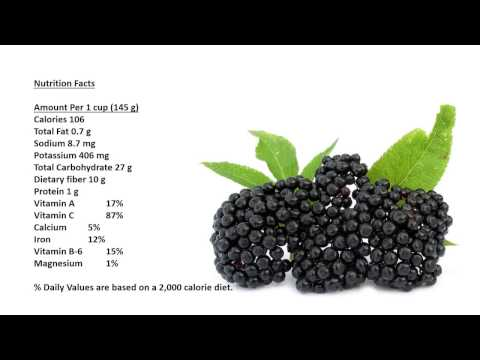 Elderberry Benefits, Elderberry Nutrition Facts, Elderberry  Health Benefits