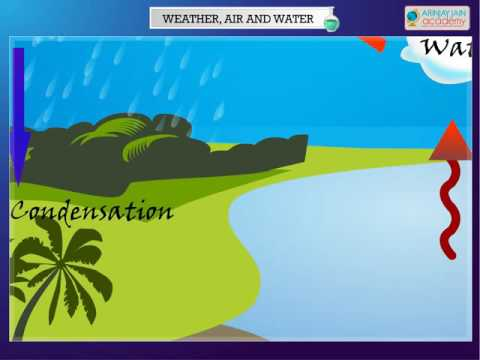 Science - Water Cycle  - CBSE Class 4 Science (IV)