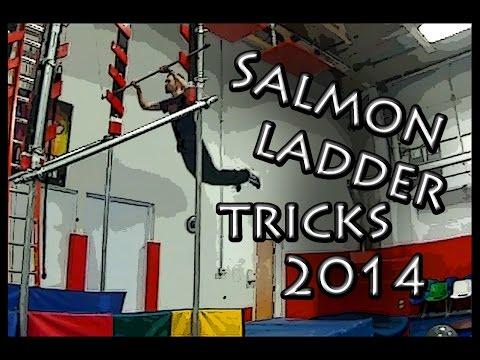 Salmon Ladder Tricks 2014
