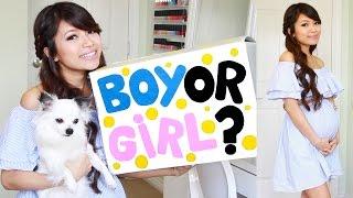Pregnancy Vlog 2 Baby Gender Reveal We Re Having A