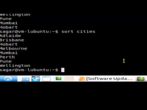 How to sort the file contents in Unix