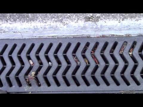 How to clean an ARCO Drain