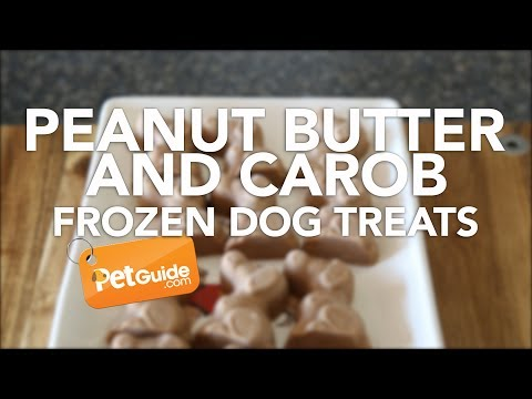 Peanut Butter and Carob Frozen Dog Treat Recipe