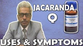 Jacaranda - Uses & Symptoms by Dr P. S. Tiwari