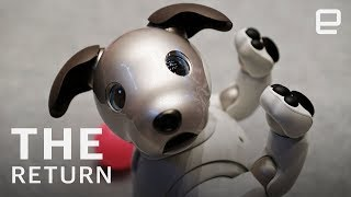 Puppy love: The return of Sony