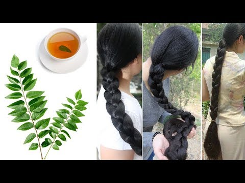 One Herb That Can Give You Long And Strong Hair In Only One Month | Get Long and Strong Hair at Home