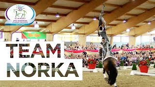 Team Norka (Germany) - Full Performance | FEI European Vaulting Championships 2017