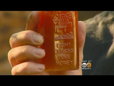 Local Honey Might Be Sweet Solution To Seasonal Allergies
