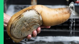 Exotic CHINESE FOOD Feast in Guangzhou! $250 Snake, Geoduck Sashimi and Sea Cucumber!