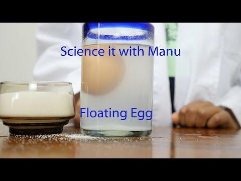 Floating an egg