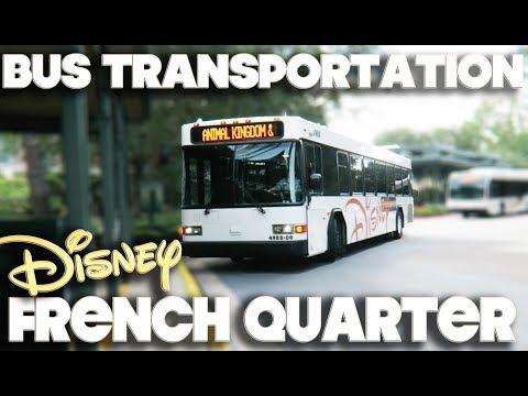 DISNEY WORLD BUS TRANSPORTATION - PORT ORLEANS - FRENCH QUARTER
