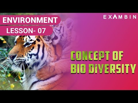 Concept of Biodiversity - Types of biodiversity, species diversity