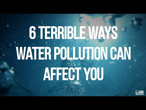 6 Terrible Ways Water Pollution Can Affect YOU