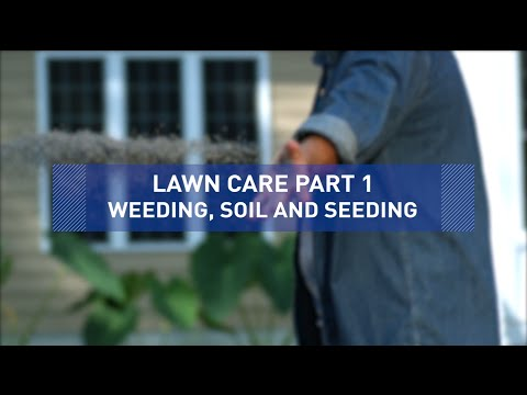 Weeding, Soil and Seeding - Lawn Care Tips Part 1