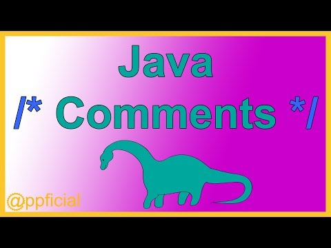Java Comments - Single Line Block Style and Javadoc Comment By Example - Java Tutorial - Appficial