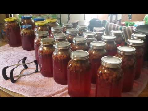 Canning easy homemade grape juice