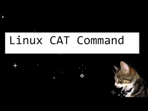 Linux Cat Command by Cosmo Cat